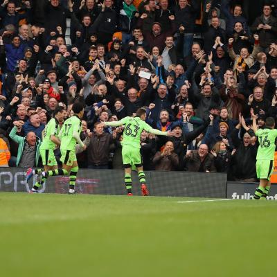 Fulham Wolves 2017